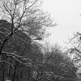 Tudo é mais lindo com neve - admito!