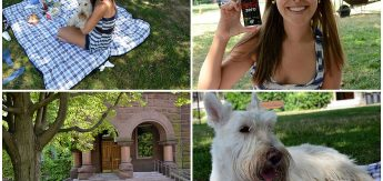 Momentos especiais na Victoria University sábado