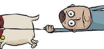 Cartoon of dog pulling