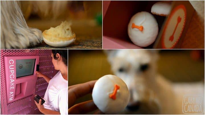 Cupcake_MagnificentMile_Gabynocanada