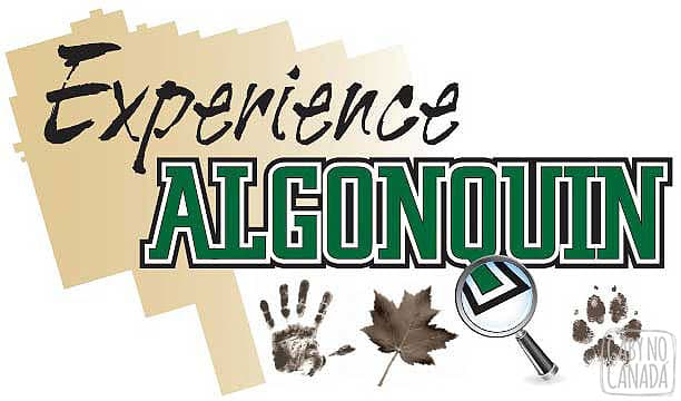 experience_algonquin