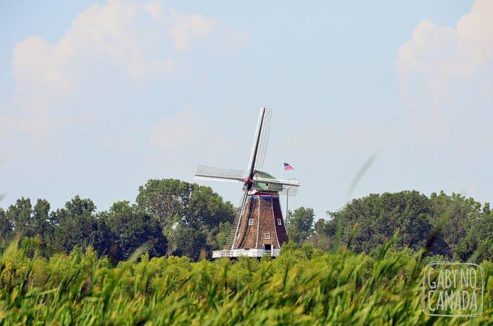 Holland_Windmill_gabynocanada
