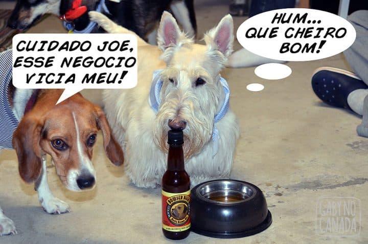 Joe4_gabynocanada10