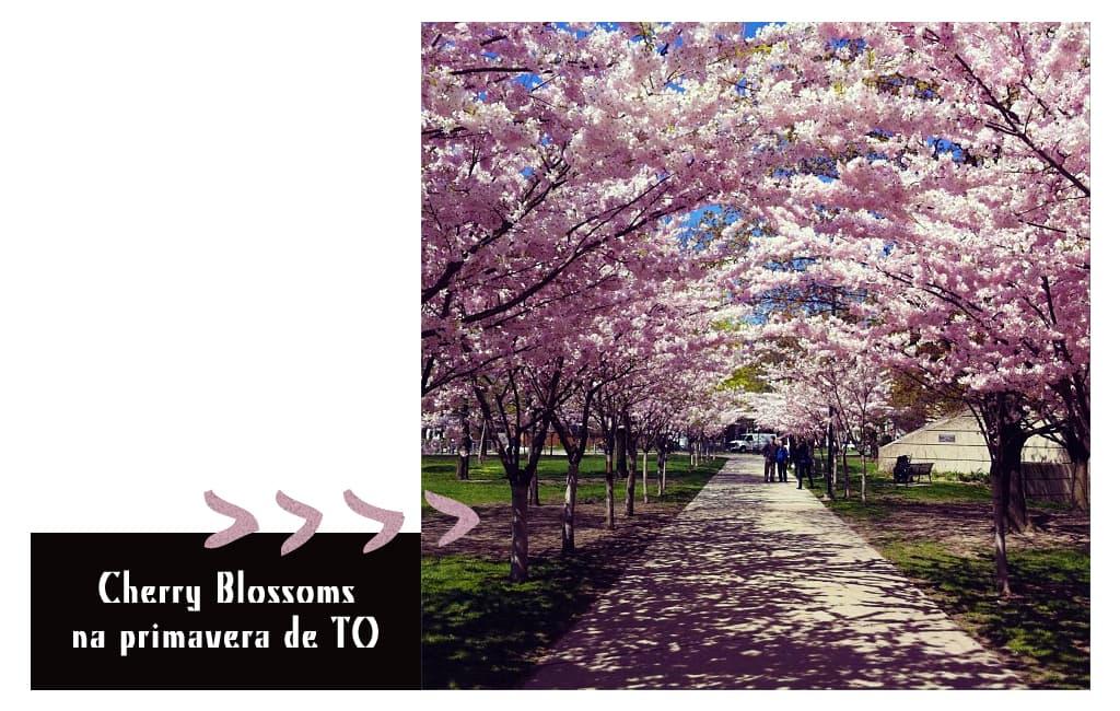 instagram_gabynocanada_photo12