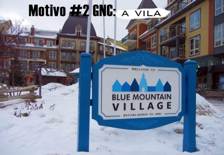 Motivo2_GNC_BlueMountains