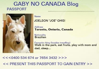 Passport_Joe