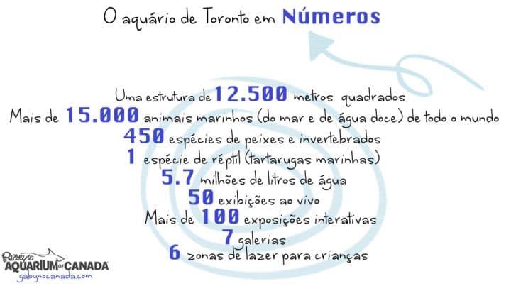 Ripleys_numeros