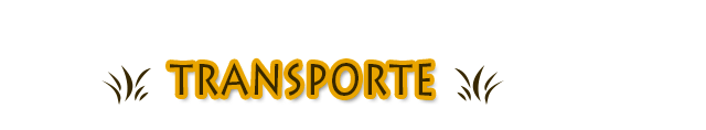 section_transporte
