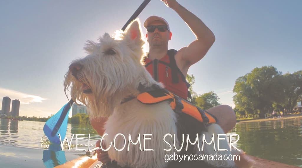WElCOME_SUMMER_2014