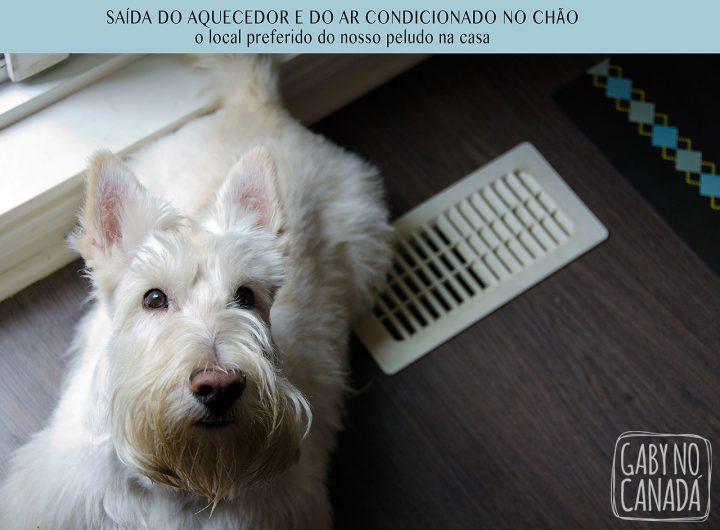 DiferençaBrasilCanada_aquecedor