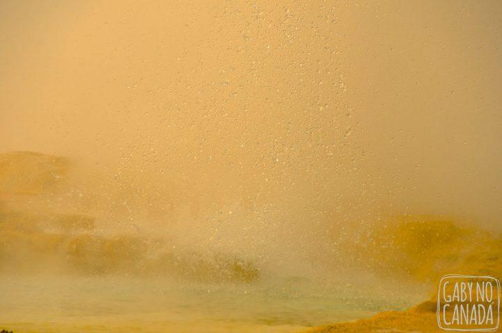 yellowstone-11