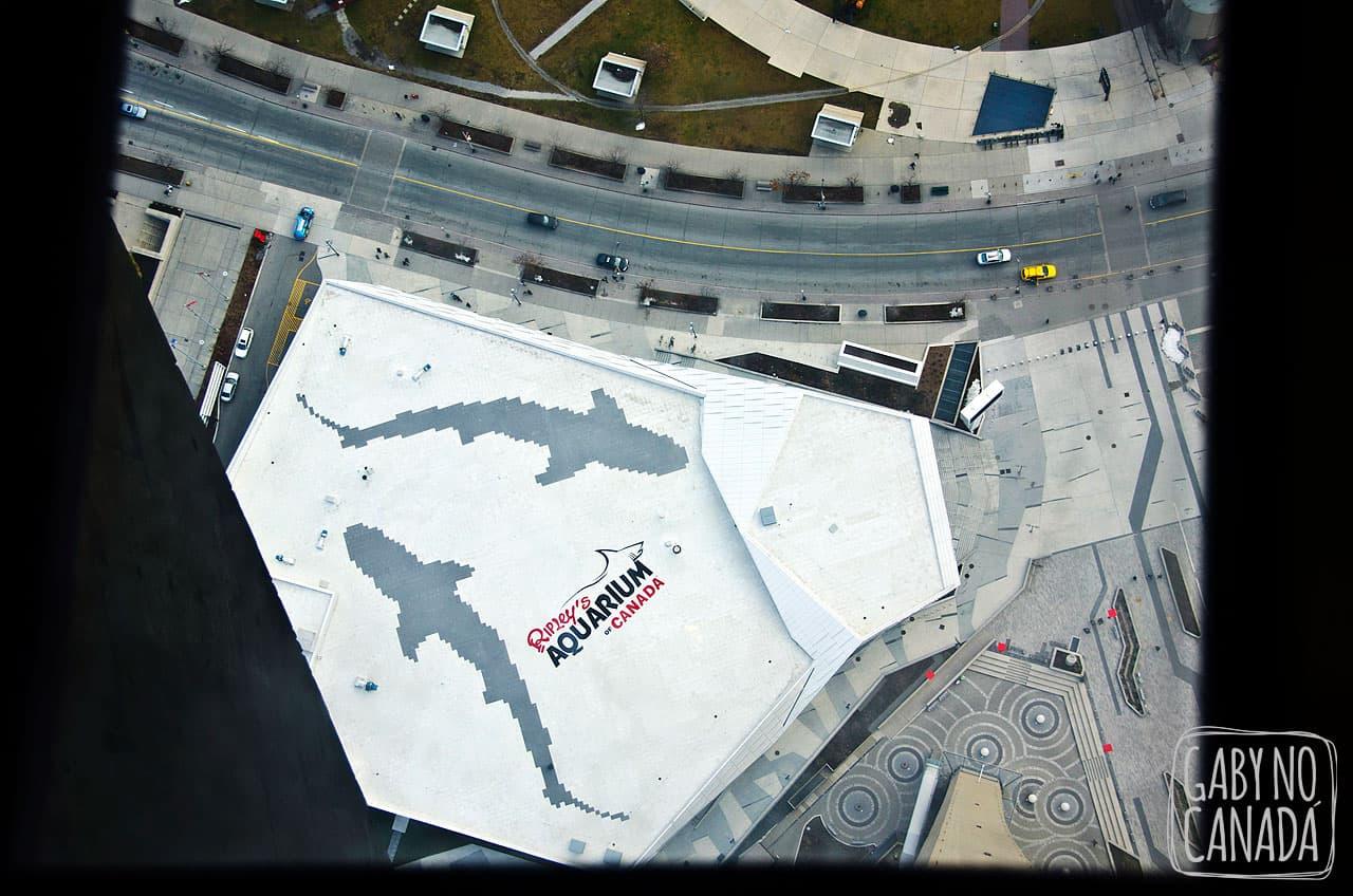 Aquário de Toronto visto do alto
