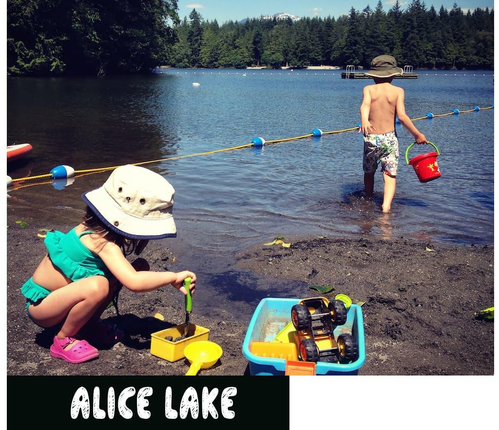 AliceLake